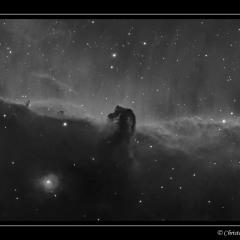 Nébuleuse de la tête de cheval (B33) – © Christophe Gervier
