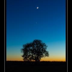 Conjonction Lune-Vénus – © Christophe Gervier